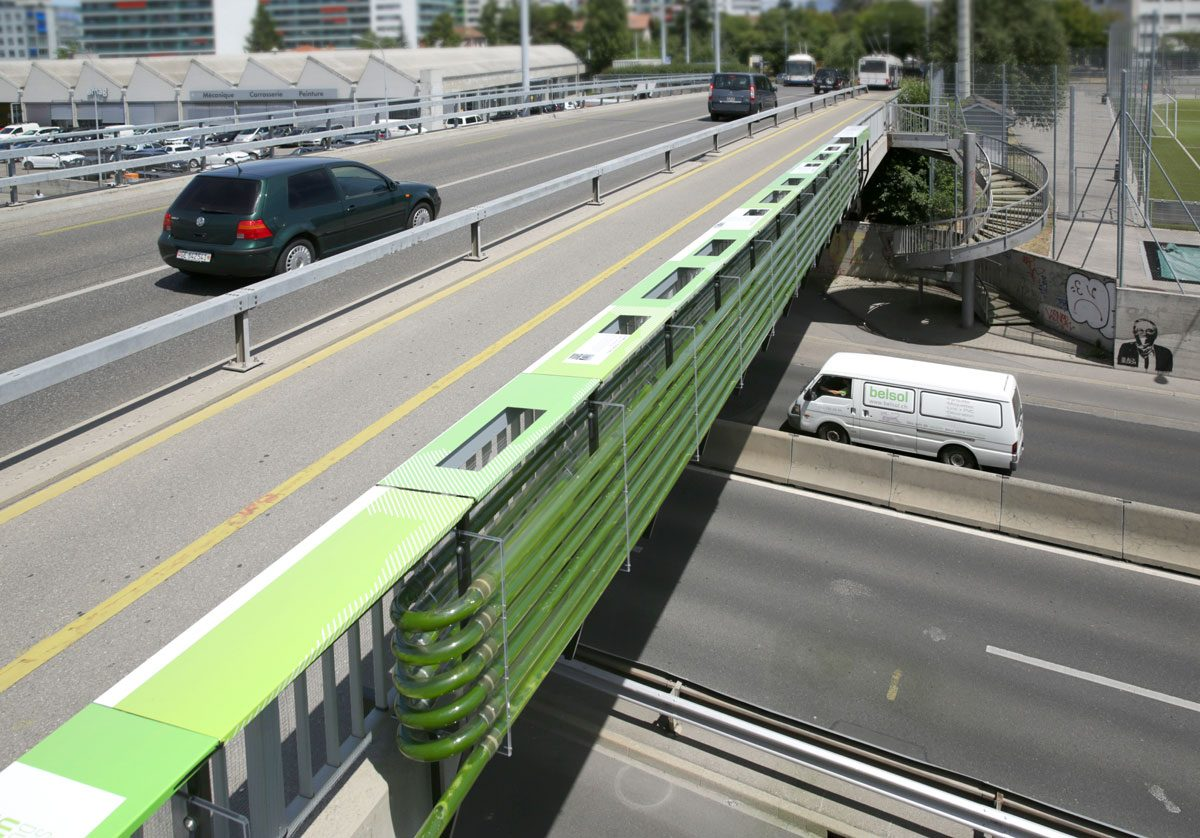 Motorway Bridge Repurposed for Energy and Future Food Production